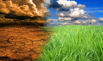 AfDB Addresses Climate Risk Financing, Insurance in Africa