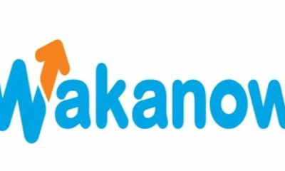 Carlyle Group Injects $40m into Wakanow
