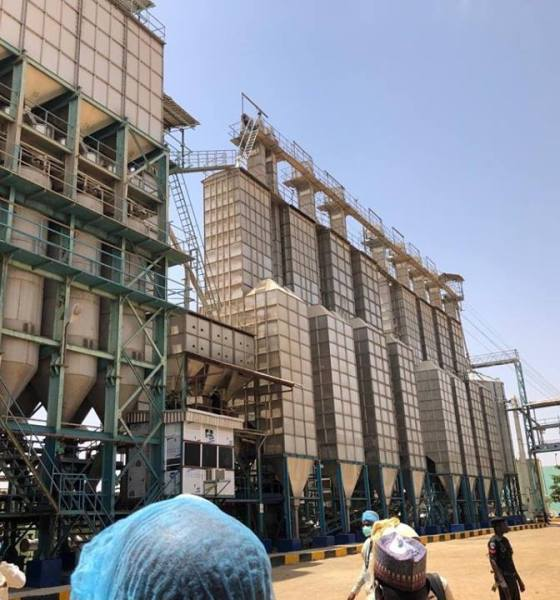 Investor to Build Sesame Processing Factory in Kano
