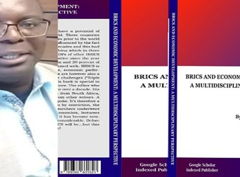 Brics Book Cover Multidisciplinary Perspective
