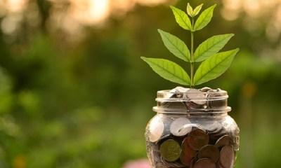 Sustainable Finance Market