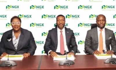 NGX 30 index