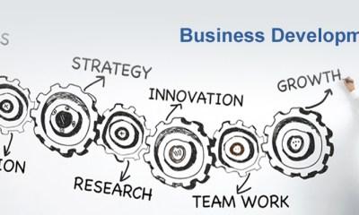 Business Development Service Providers