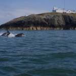 Wales Lighthouse 02