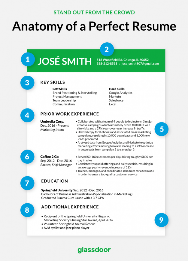 This Is What The Perfect CV Looks Like In 2019