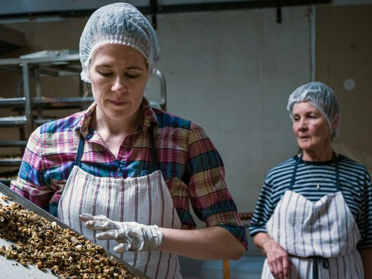 Entrepreneur turns favor for friend into gluten- and grain-free granola business – StarTribune.com