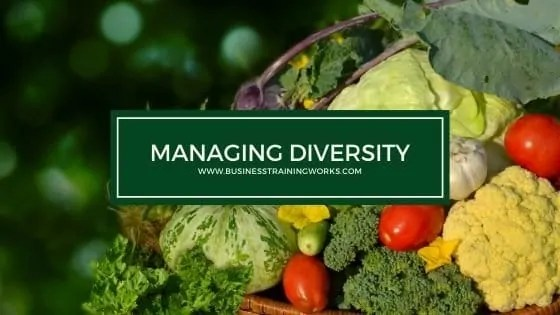 Managing Diversity Training