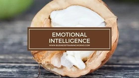 Emotional Intelligence Training Program