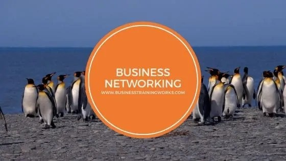 Business Networking Webinar
