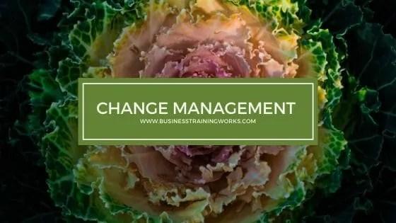 Change Management Course