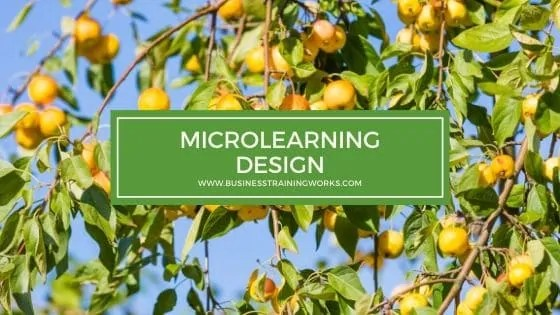 Microlearning Design Course