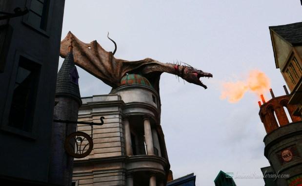tips on visiting wizarding world of harry potter - shrunken head