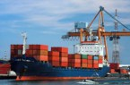 Cargo firms, Arik, others partner on $5.2b agro export
