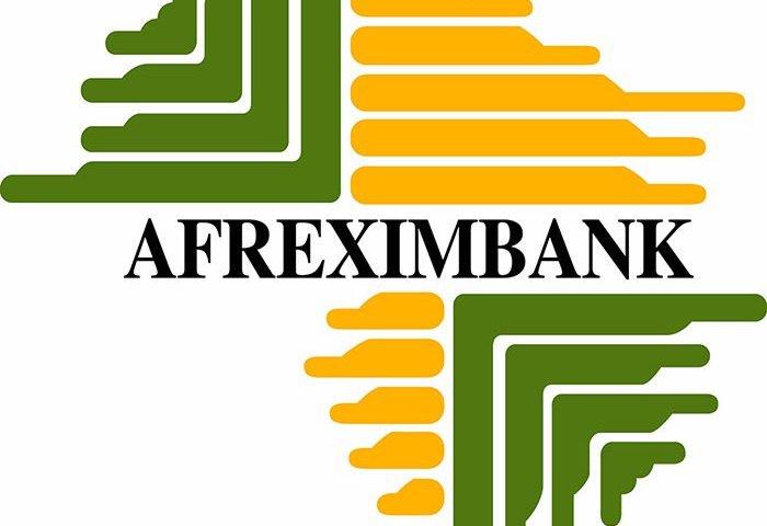 'Afreximbank'll create digital ecosystem for finance flows'