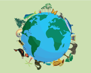 Global warming and ecosystems