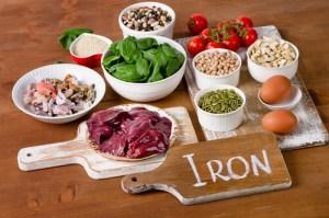 Essential nutrients definition