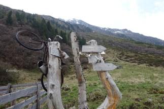 Südtirol_Knuttenalm_03