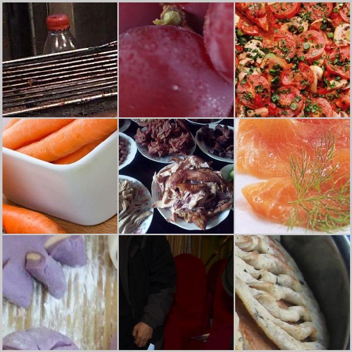冷凍肉芽消除費用|愛食網|冷凍肉芽消除費用