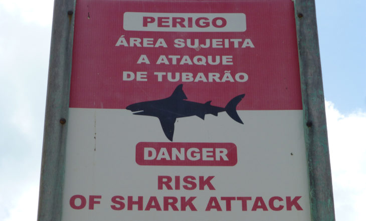 Attention sign: danger of shark attacks on the beach of Boa Viagem in Recife, Pernambuco – Brazil