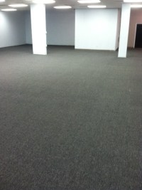 Best Commercial Carpet Cleaning   Busy Bee Carpet Steamers