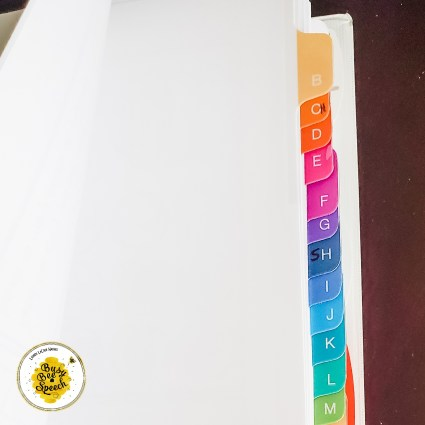 SLP paperwork binder tabs