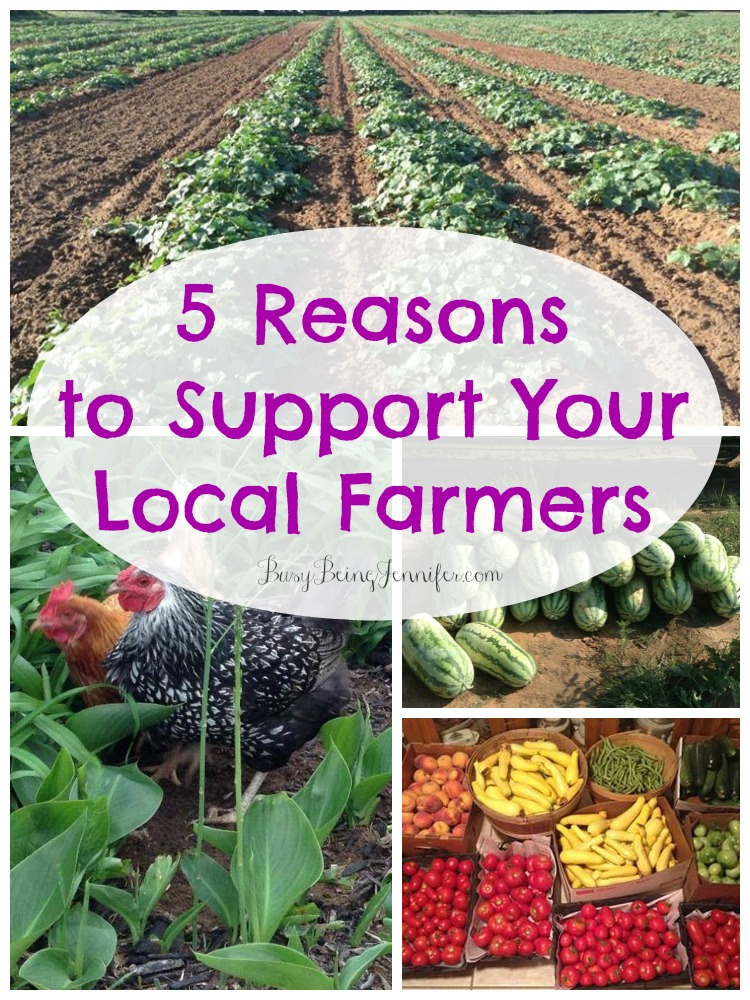 Five Reasons to Support Local Farmers at Busy Being Jennifer [Weekly Round-Up at High-Heeled Love]