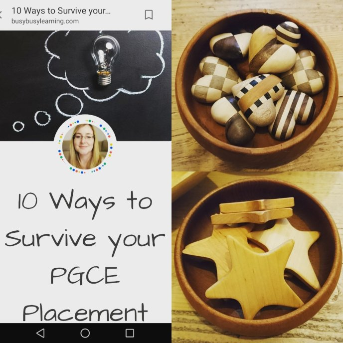 10 Ways to Survive your PGCE Placement Student Teacher