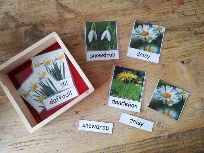 Three Part Montessori Inspired Cards Spring Flowers