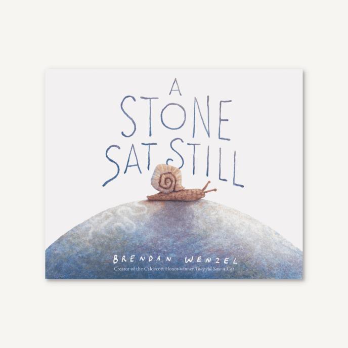 Book - A Stone Sat Still - Brendan Wenzel