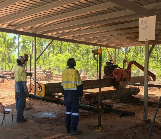 Commercial and sustainable forestry for Indigenous communities in the NT
