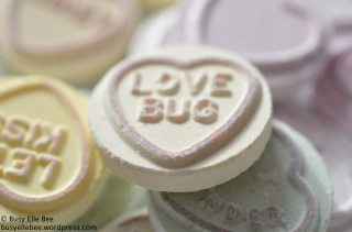 Love Bug sweetie