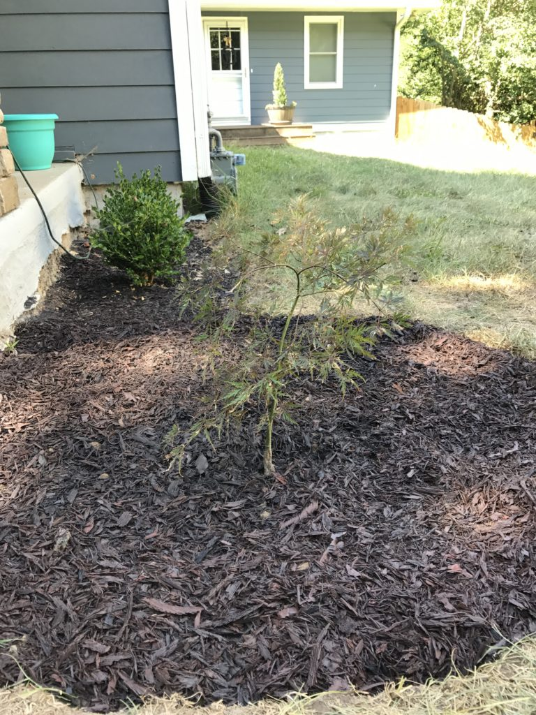 how to make a plant bed for your yard busy bites