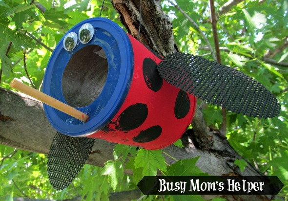 Ladybug Bird Feeder Summer Camp Craft
