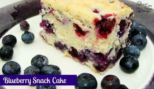 Easy Blueberry Snack Cake
