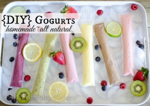 homemade_gogurt-1