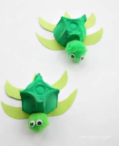 Egg Box Turtles