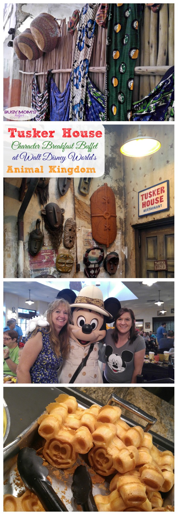 Tusker House Character Breakfast Buffet at Walt Disney World's Animal Kingdom