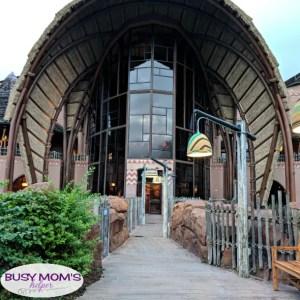 Everything you need to know about Disney Vacation Club aka: DVC #disney #waltdisneyworld #disneyland #hotels #disneyhotels #disneyvacationclub #dvc #disneyparks #travel #familytravel