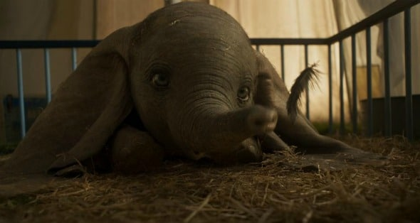 Dumbo: The Family We All Need #Dumbo