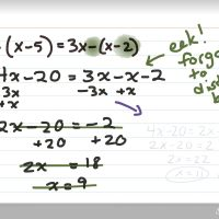 Celebrate the Errors in Math Practice