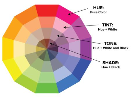 Website Design Skills -Color Theory