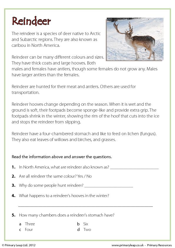 Christmas Comprehension Reindeer