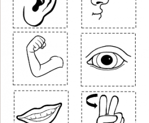 body parts game volcano worksheets vocabulary writing