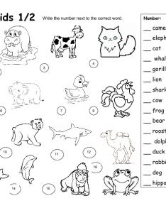 also dobble kids animal worksheet rh busyteacher