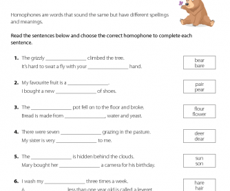 Using The Correct Homophone 1