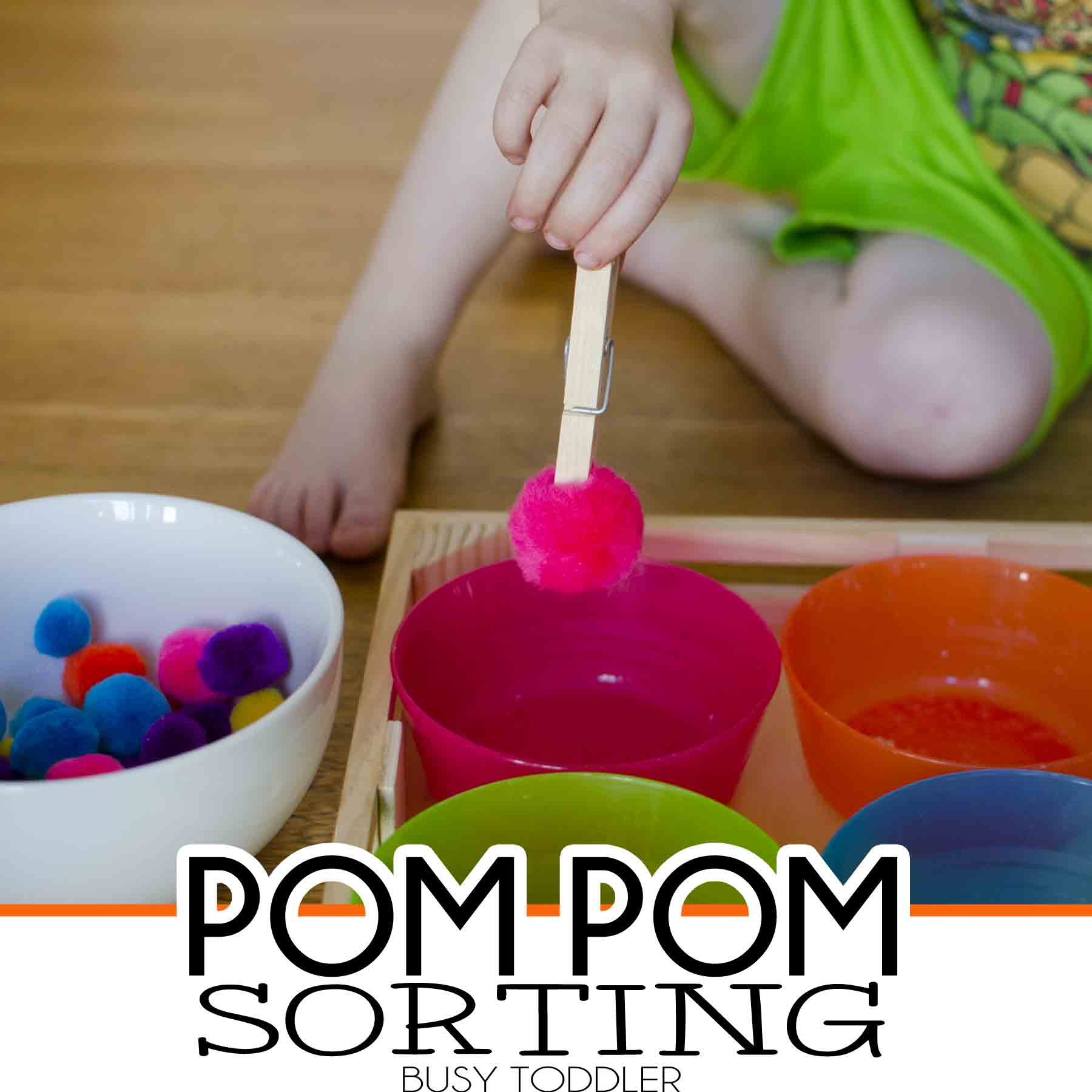 Pom Pom Sorting Fine Motor Skills Activity