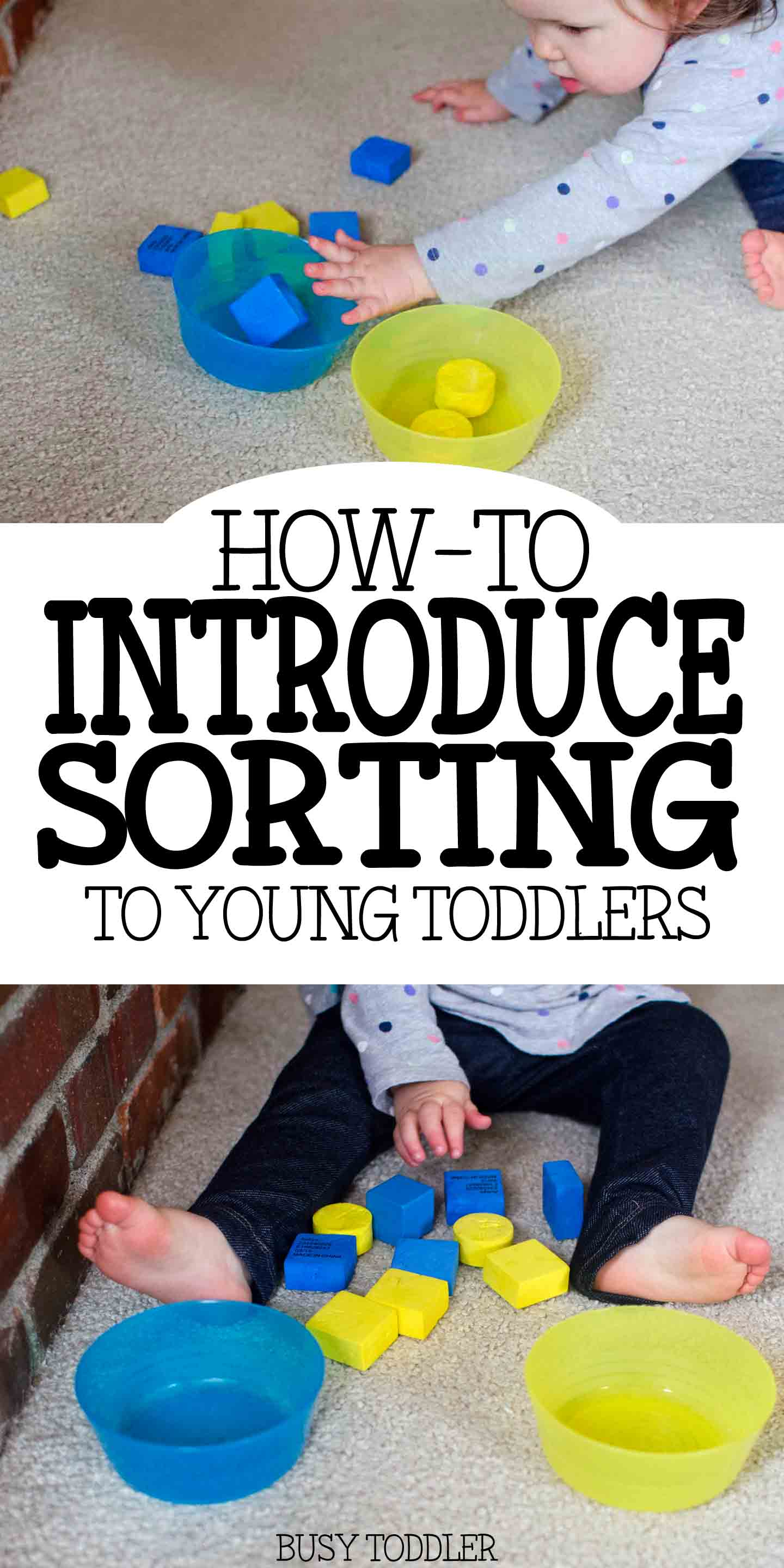 Introducing Sorting Teaching Young Toddlers