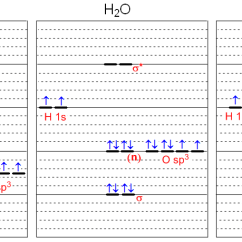 Molecular Orbital Diagram Of Oh Lion Skeleton Chem 492 Water Hydronium Hydroxide A Completed For H2o And H3o Is Shown Above Based On This Check The Box Next To Each True Statement