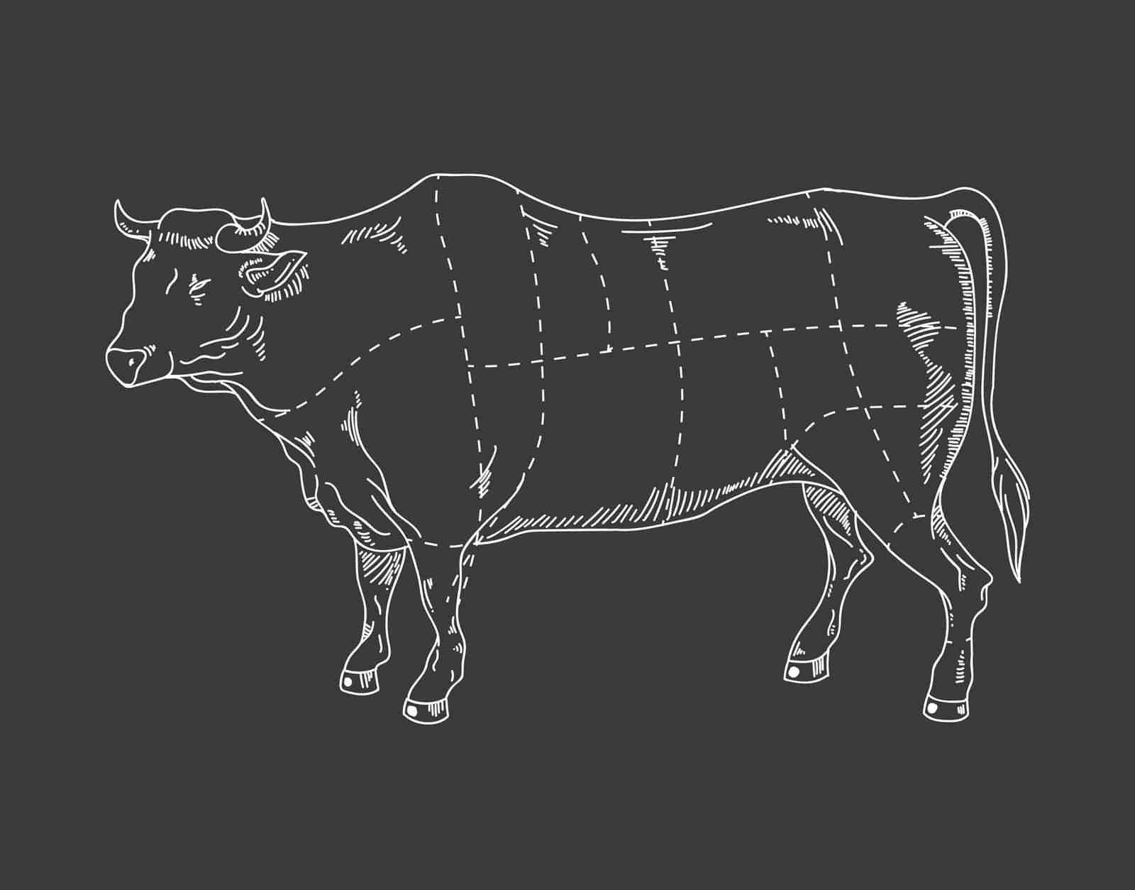 dairy cow parts diagram distribution box wiring butcher magazine
