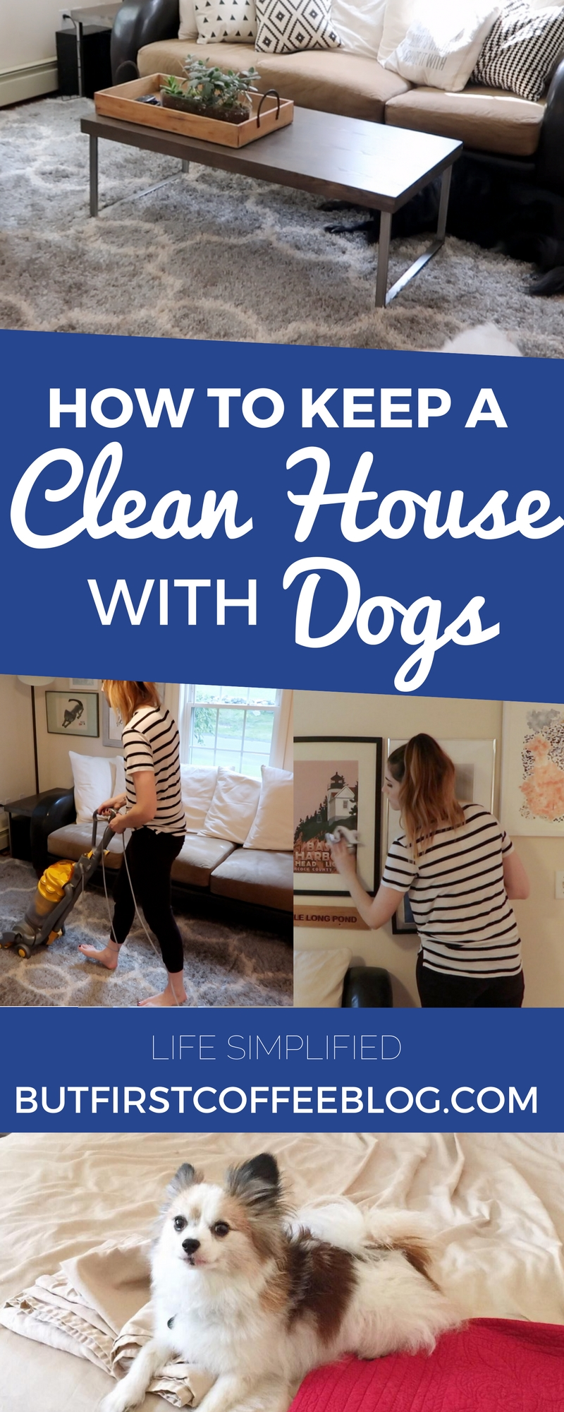 How to Keep A Clean House With Dogs | House Cleaning Hacks for Pets
